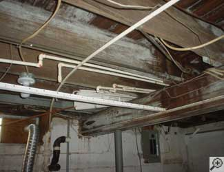 a humid basement overgrown with mold and rot in Villanova